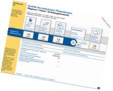 Transparenzbericht 2017 für Pflegeteam 3 Säulen